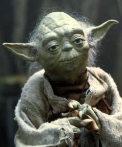 Notre consultant référencement Yoda à votre service