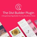 Comment configurer son thème avec DIVI Builder ? 6