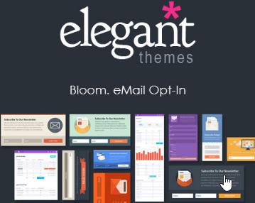 Comment tout savoir sur Bloom plugin ? L'extension Optin Elegant thèmes